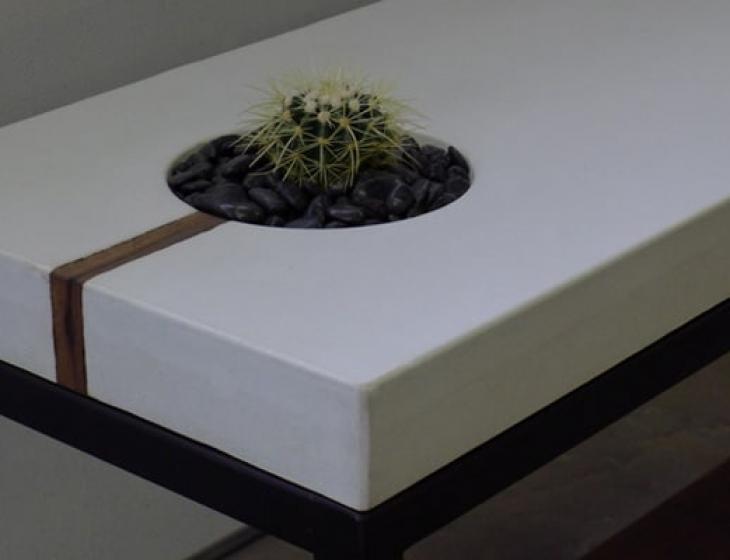 succulent sofa table